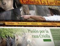 Cabaña La Lucila